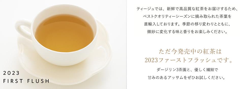 2020ファーストフラッシュ