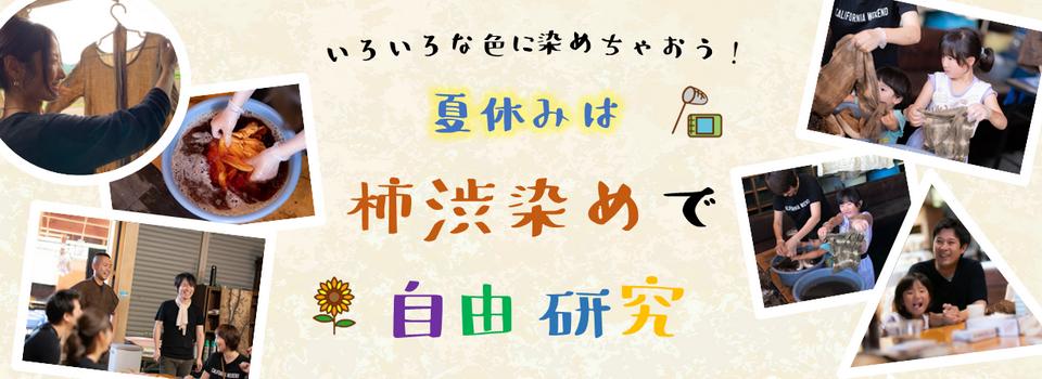 夏休み柿渋染め体験