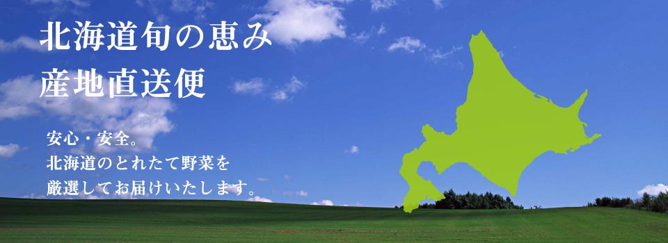 第28回日本シニアオープンゴルフ選手権前売券
